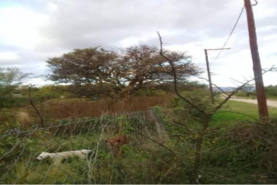 Arroyo de los patos, Córdoba, Argentina, ,Chacras-Quintas,Venta,el brete ,1016